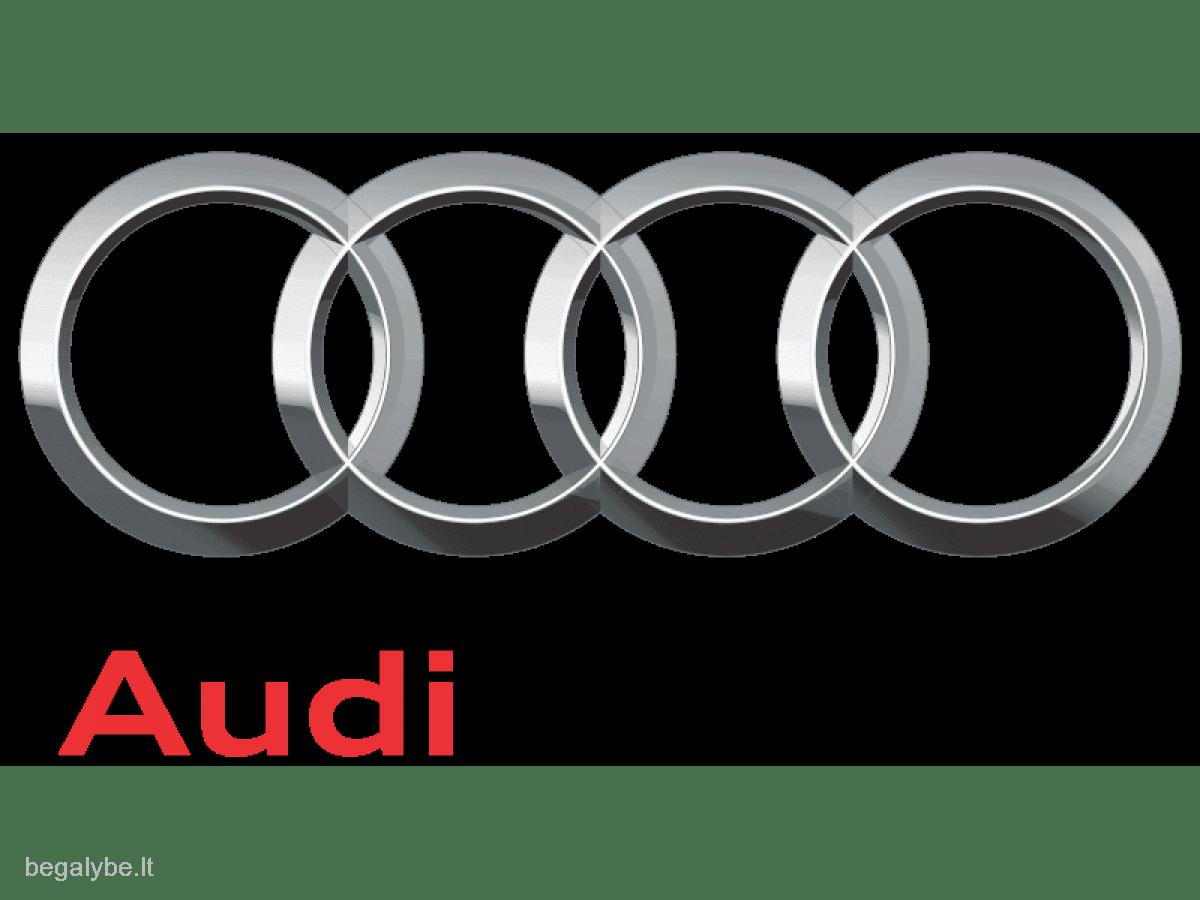 Skubus-Brangus auto supirkimas +37067505535 - 2/14